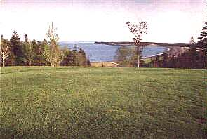 View of Herring Cove from 1st Tee