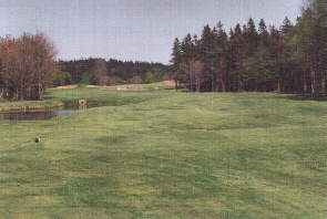 View of 4th hole from tee